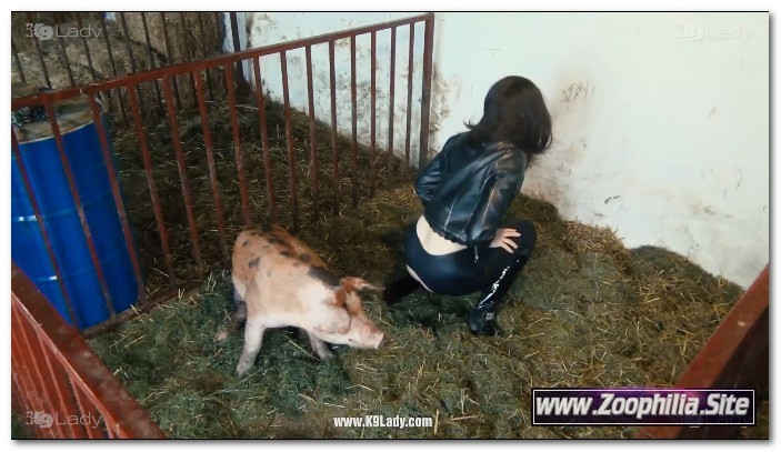 29 - Wild Boar Fucks A Girl - Sex With Pigs • Zoophilia Site