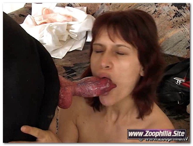 Cheela - Anelia, Chela and dog anal